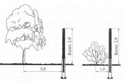 Схема посадки дерева и кустарника