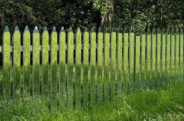Разрисованный забор