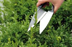 Для стрижки больших площадей удобней пользоваться ножницами с длинными ножами и волнистой или зубчатой заточками. Такие формы лезвий четко фиксируют ветку, что препятствует её выскальзыванию.