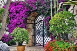 «Оживить» калитку можно с помощью вьющихся растений. Для этого используют плющ, бегонию или плетистые розы. А для того, чтобы при входе чувствовался приятный аромат, можно посадить саженцы жасмина.