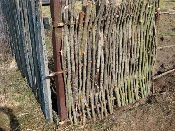 Забор из веток деревьев своими руками