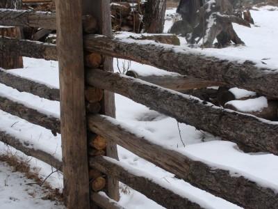 Забор из жерди