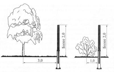 На каком расстоянии можно сажать деревья от забора соседа 426