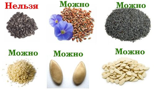 Разрешенные и запрещенные семечки при панкреатите