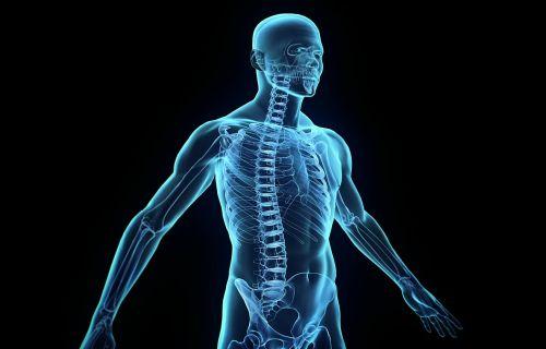 спинальный инсульт - нарушение кровообращения в спинном мозге