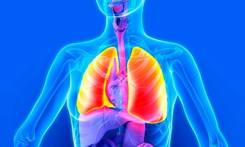 Проблема пневмофиброза легких