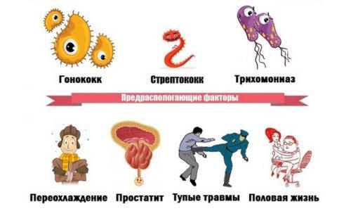 Оба заболевания провоцируются такими причинами, как снижение иммунитета, переохлаждение, передача инфекции во время полового акта и др